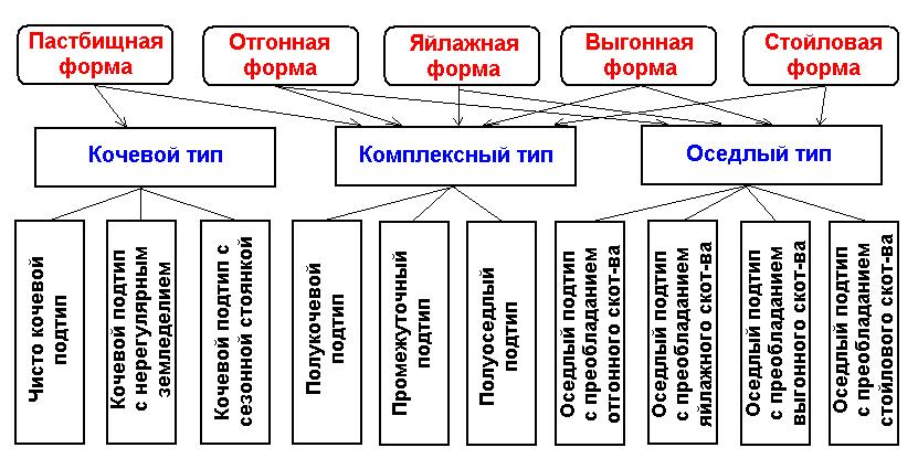 Схема. Классификация традиционного скотоводческого хозяйства у народов Средней Азии и Казахстана