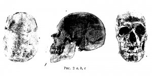 Хазарские черепа разных типов