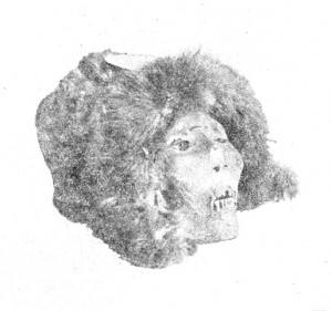 Шапка-капор