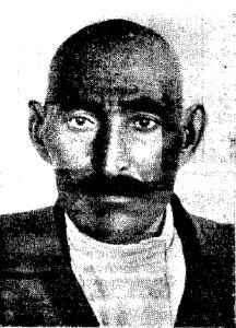 Понтийский тип (мишарь Чистопольского района)